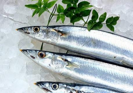 北海道産新秋刀魚の塩焼き